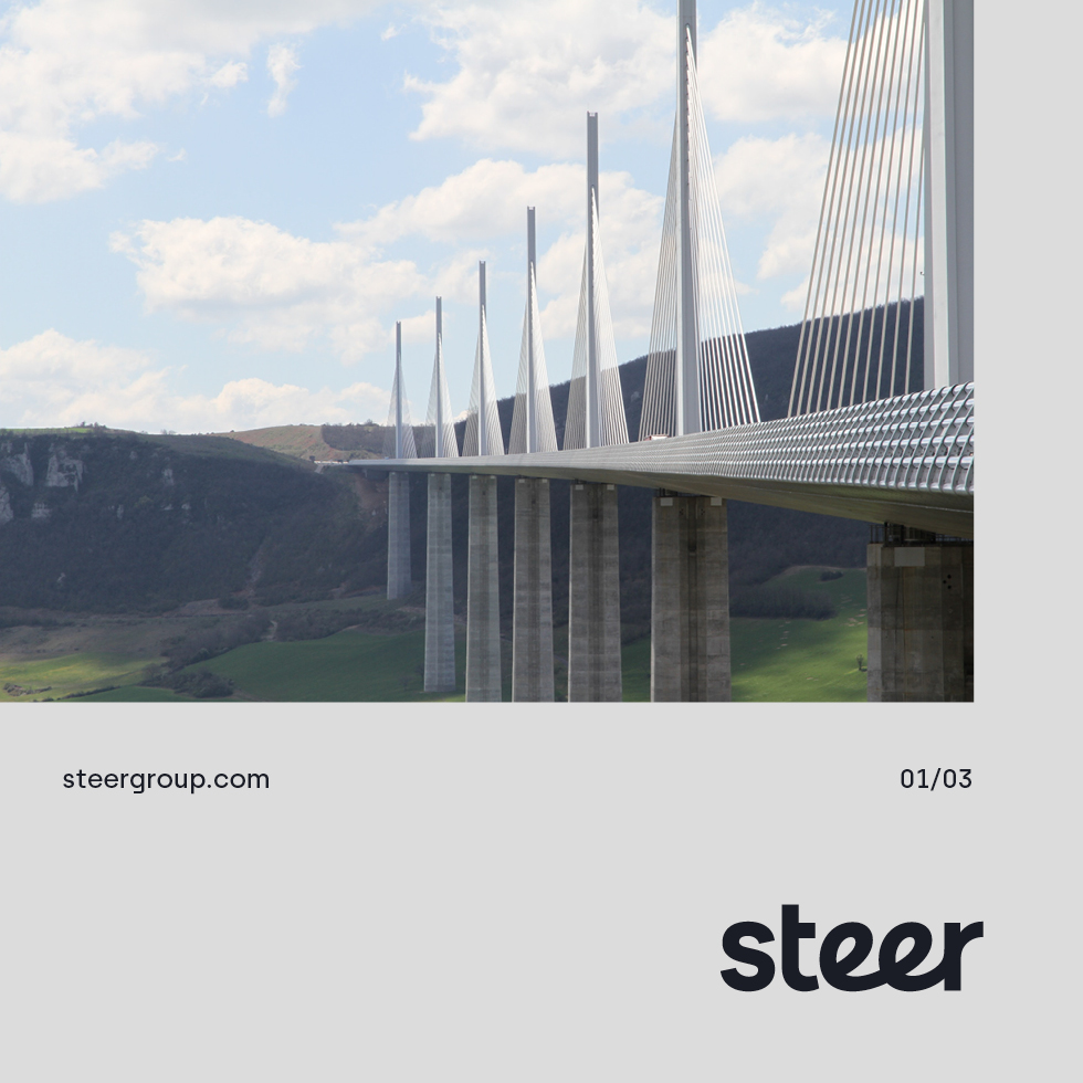 Steer-Small-2
