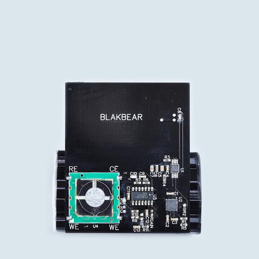 BlakBear_Small4